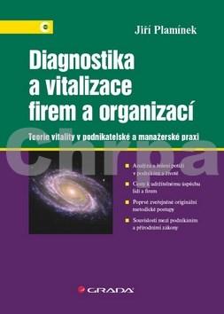 Diagnostika a vitalizace firem a organizací