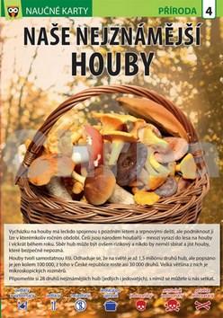 Naučné karty Naše nejznámější houby