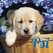 Psi 2019 - nástěnný kalendář