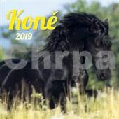 Koně 2019 - nástěnný kalendář
